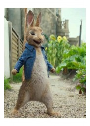 James Corden Peter Rabbit Jacket